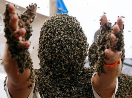 Пчелиная роба - необычные китайские соревнования — фото 10