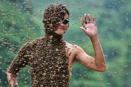 Одно лишнее движение и пчелы могут растерзать