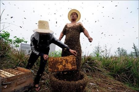 Пчелиная роба - необычные китайские соревнования — фото 8