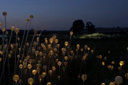 Световые скульптуры Брюса Мунро — фото 12