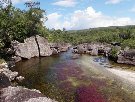 Каньо Кристалес - самая красивая река на планете — фото 10