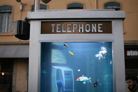 Аквариум в телефонной будке: креативный арт-объект Буфалино и Дизея — фото 3