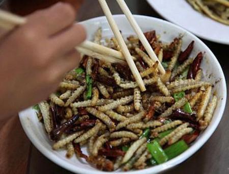Двенадцать самых вкусных блюд из насекомых — фото 1