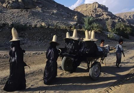 Местные женщины выходят собирать урожай в поле