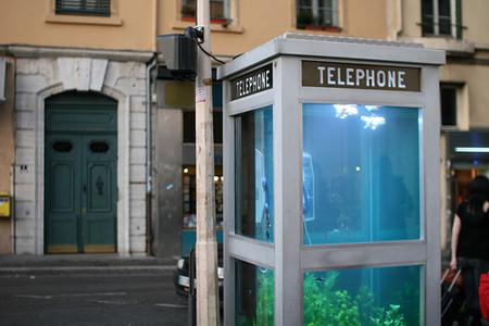 Внутри телефонной будки самый настоящий аквариум