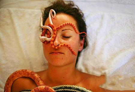 Вместо рук массажиста работают змеи