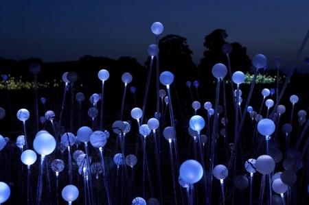 Световые скульптуры Брюса Мунро — фото 9