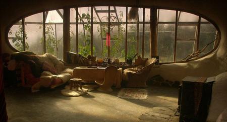 А из этого обзорного окна семейство Саймонов наблюдает за жизнью лесных жителей