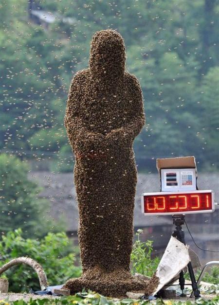 Хорошо костюмчик сидит. ) Здесь около 26 кг. живых пчел
