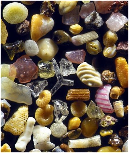 Песчинки под микроскопом. Уникальные макрофотографии Гэри Гринберга — фото 12