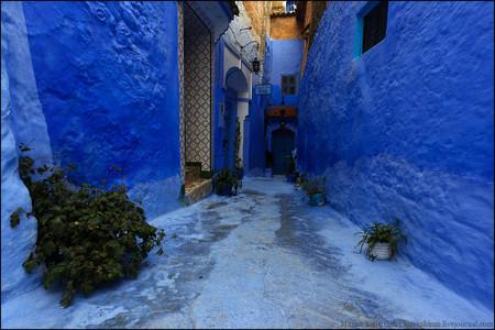 В городе окрашены в голубой цвет не только дома...