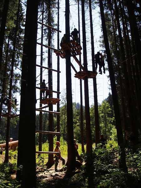 Дерево веревочный курс на Waldseilgarten