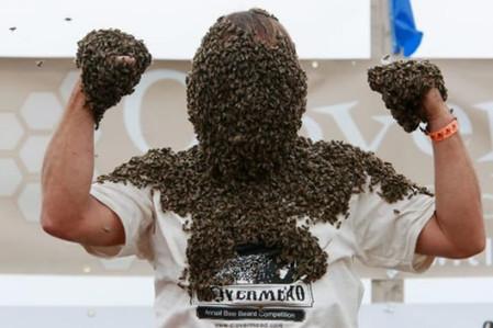 Пчелиная роба - необычные китайские соревнования — фото 11