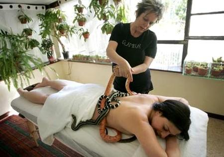 Змеиный массаж - удовольствие не для слабонервных — фото 14