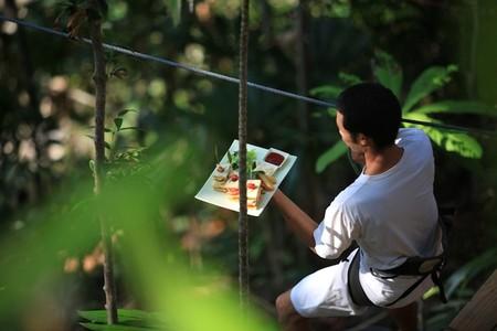Блюда готовят в тайландском ресторане только из экологически чистых продуктов