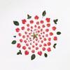 Взорванные цветы от Фонг Ци Вэй