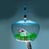 Glasshouse: светильник-парник от Кристины Поеровой