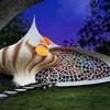 Наутилус - необычный дом-ракушка