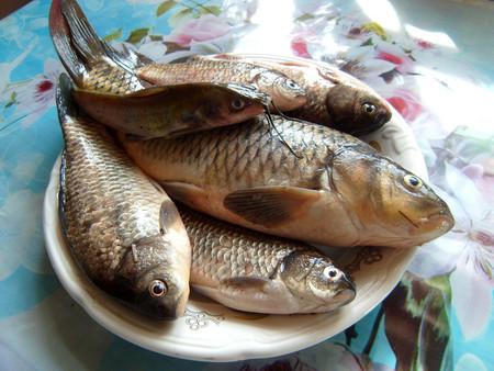Фаршированная рыба — фото 1