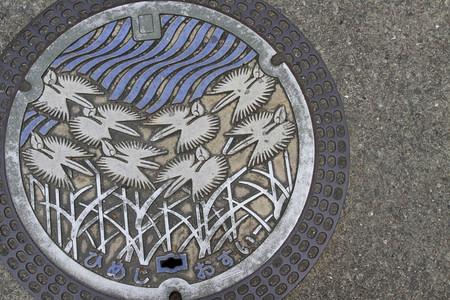 Не топтать! Расписные канализационные люки — фото 7