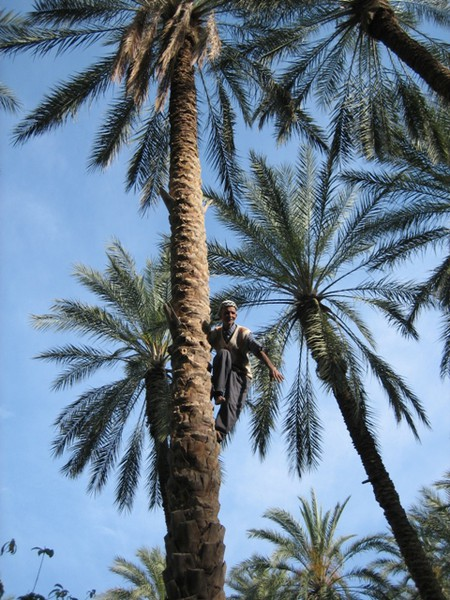 Непляжный Тунис — фото 1