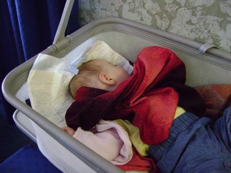 Малыш-путешественник. — фото 4