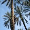 Непляжный Тунис