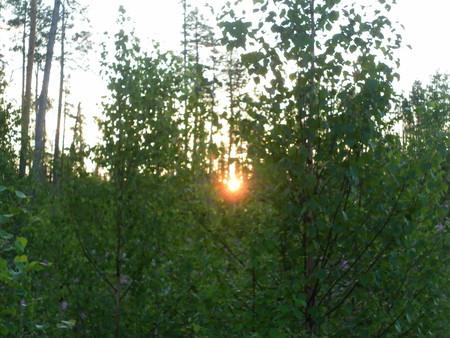 Карелия - удивительный край — фото 1