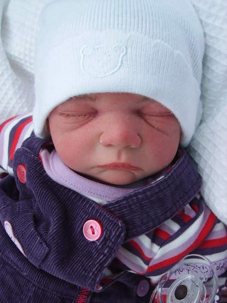 Новорожденные куклы от Glenda Ewarts — фото 1