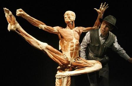 """Выставка человеческих останков  - """"Миры тела"""" — фото 6"""