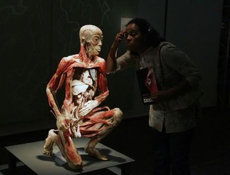 """Выставка человеческих останков  - """"Миры тела"""" — фото 7"""