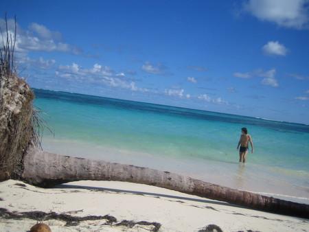 Привет из Доминиканы — фото 5