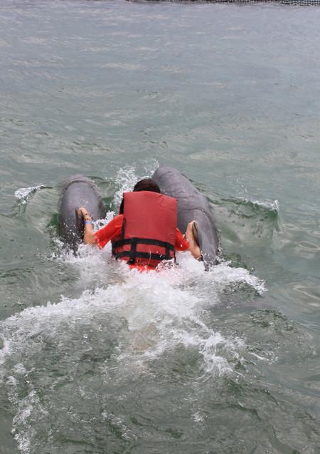 Мужчинам лучше кататься бочком (из-за задних плавников дельфинов)