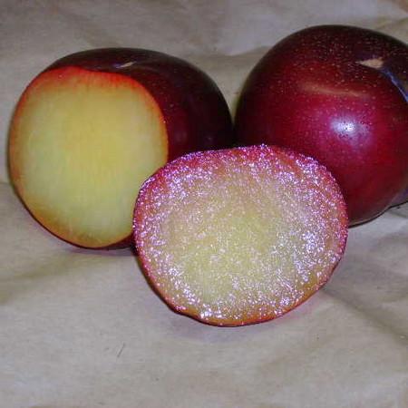 Экзотическая еда с другой планеты: необычные гибриды овощей и фруктов на нашем столе — фото 6