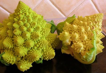 Экзотическая еда с другой планеты: необычные гибриды овощей и фруктов на нашем столе — фото 4