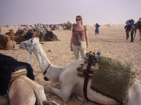 Поездка в Сахару. — фото 2