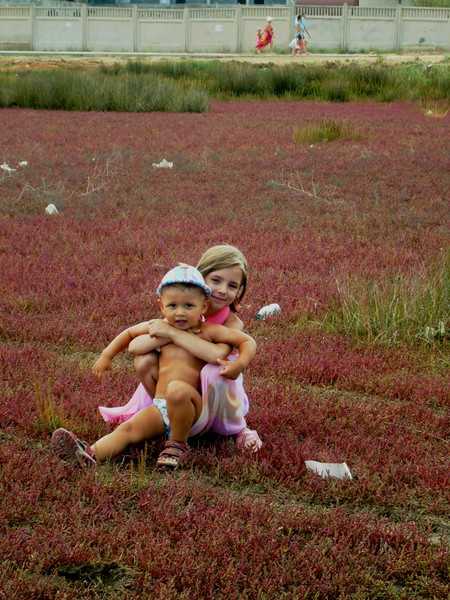 Как обустроить детскую для разнополых детей — фото 1