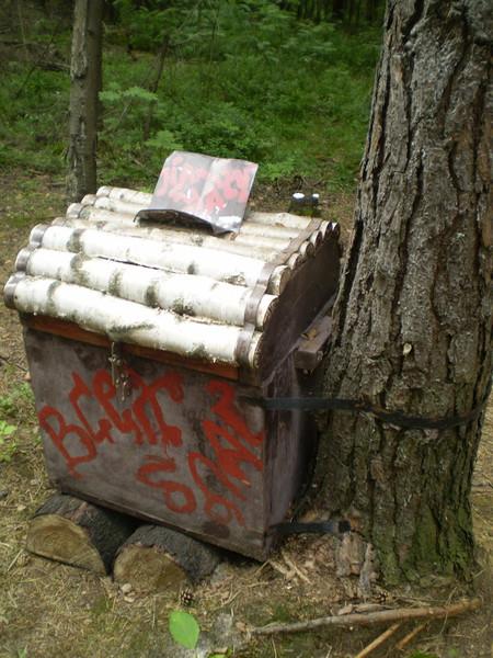 В лесу ничуть не хуже... — фото 10