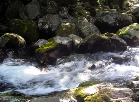 Чистейшая вода из недр Пидана