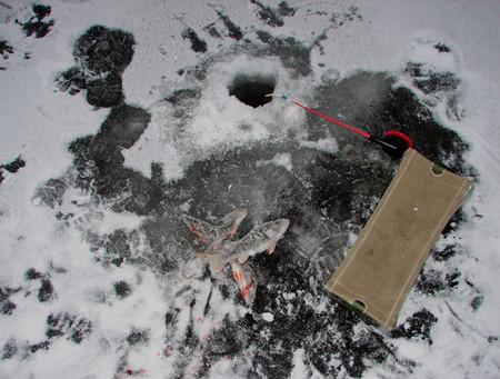 Моя первая зимняя рыбалка — фото 5