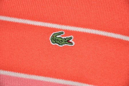 Веселенький весенний свитерок от Lacoste — фото 3
