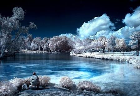 Увидеть невидимое. Мир в лучах инфракрасного света — фото 6
