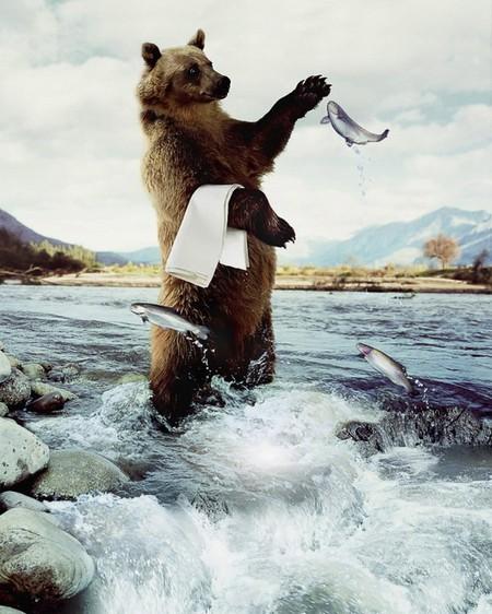 Юмор и креатив рекламных проектов фотохудожника Франка Юттенхова — фото 12