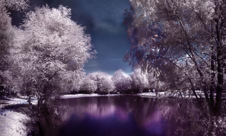 Увидеть невидимое. Мир в лучах инфракрасного света — фото 7