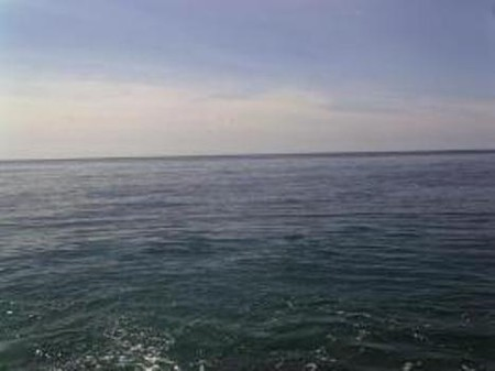 Южный берег Крыма.  Гаспра  в  мае ! — фото 2