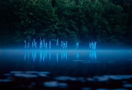 Мистические образы природы — фото 3
