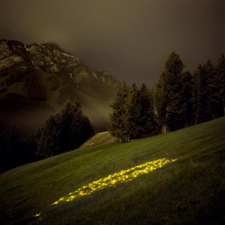 Мистические образы природы — фото 1