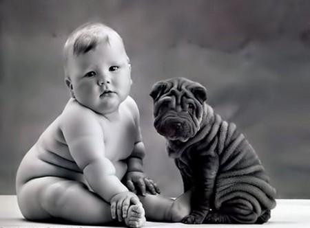 Вам не удастся никогда создать мудрецов, если вы будете убивать в детях шалунов. (Ж.Ж. Руссо) — фото 3