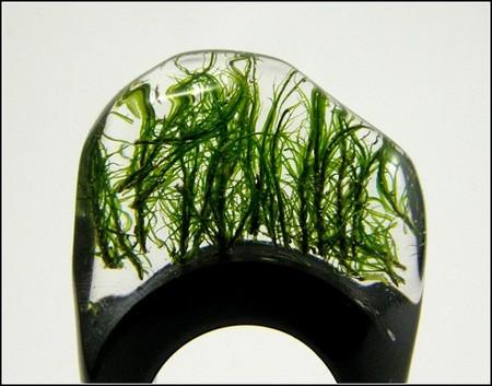 Украшения с живыми растениями от Sylwia Calus Design. — фото 2