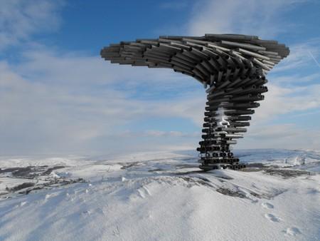 Уникальное дерево – орган в Британии. — фото 1